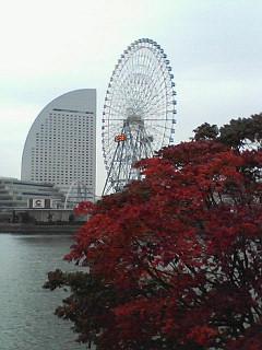 ぶらり横浜の旅 極私的11.24